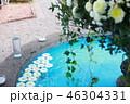 ガーデン 庭 ガーデニングの写真 46304331