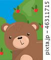 くま クマ 熊のイラスト 46311715