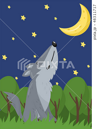 Cute wolf vector illustration with woodland animal, design element for banner, flyer, placard 46311717