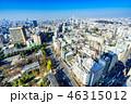 東京都 展望 都市の写真 46315012