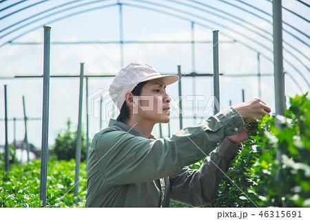 農業 男性 46315691
