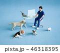 獣医とペット 46318395