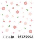 桜 花 春のイラスト 46325998