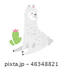 アルパカ 動物 背景のイラスト 46348821