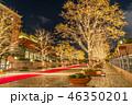 恵比寿ガーデンプレイス イルミネーション ライトアップの写真 46350201