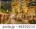 恵比寿ガーデンプレイス イルミネーション ライトアップの写真 46350210