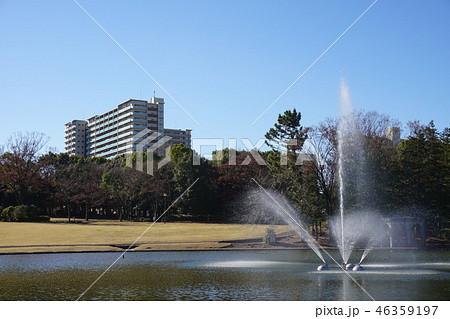 多摩中央公園の池の噴水 46359197
