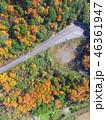紅葉 ドローン 空撮の写真 46361947