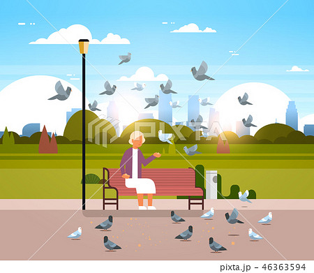 senior woman feeding flock of pigeon sitting wooden bench urban city park cityscape background 46363594