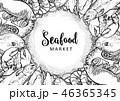 ベクトル サカナ 魚のイラスト 46365345