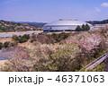 (静岡県)サイクルスポーツセンター 伊豆ベロドローム 春 46371063