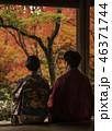 京都の秋 46371744