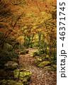 京都の秋 46371745