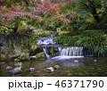京都の秋 46371790
