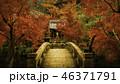 京都の秋 46371791