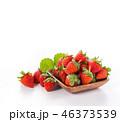イチゴ いちご 苺の写真 46373539