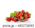 イチゴ いちご 苺の写真 46373693