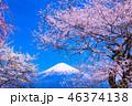 富士山 桜 春の写真 46374138