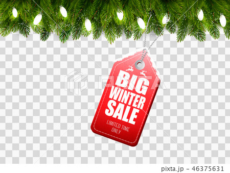 Winter Sale Tag with Christmas branches of tree 46375631