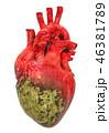 ハート ハートマーク 心臓のイラスト 46381789