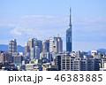 福岡タワー 福岡 晴れの写真 46383885