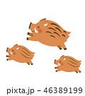動物 イノシシ 猪のイラスト 46389199