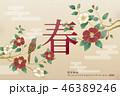 つばき 椿 中国新年のイラスト 46389246