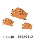 イノシシ 猪 ジャンプのイラスト 46389412