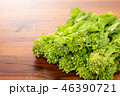 野菜 食材 菜の花の写真 46390721