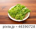 野菜 食材 菜の花の写真 46390728