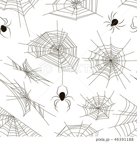 Collection of spiders and webs pattern 46391188