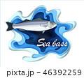 魚 海 食のイラスト 46392259