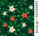 パターン 柄 模様のイラスト 46394693