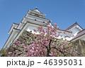 鶴ヶ城 46395031