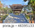 香椎宮 神社 秋の写真 46395133