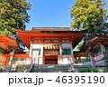 香椎宮 神社 楼門の写真 46395190
