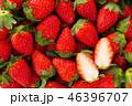 果物 フルーツ いちごの写真 46396707