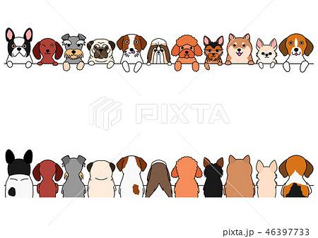 犬たちのボーダー 前後 小型犬 46397733