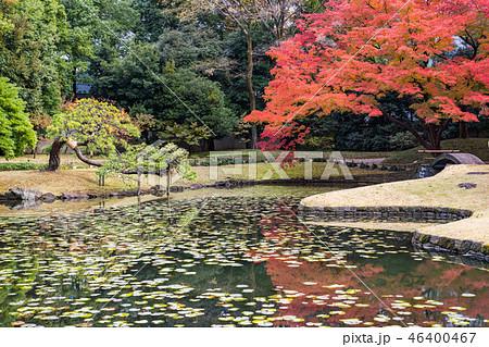 (東京)小石川後楽園 紅葉の季節 46400467