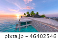 ビーチ 南国 夏のイラスト 46402546