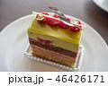 美味しそうな木苺のケーキ 46426171
