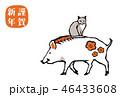 亥猫 46433608