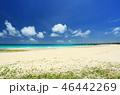伊良部島 渡口の浜 砂浜の写真 46442269