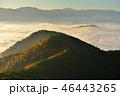 高ツムジ山の雲海 46443265