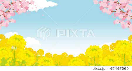 桜と菜の花 背景イラスト 46447069