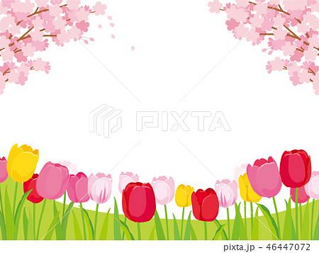 桜とチューリップ 背景イラスト 46447072