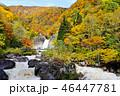 苗名滝 地震滝 秋の写真 46447781