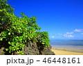 小浜島 ビーチ 青空の写真 46448161
