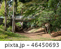 風景 喜多院 境内の写真 46450693