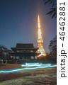 風景 寺 ネオンの写真 46462881